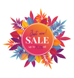 autumn sale banner with bright leaves vector image