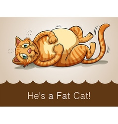 Fat cat lying on its back vector