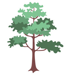 green oak tree with bushy branches and brown trunk vector image