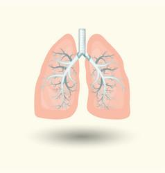 Human lungs cartoon style vector