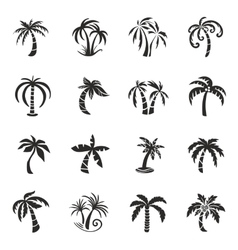 Palm Tree Icons vector image