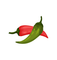 red and green hot chilli pepper vector image