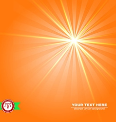 Abstract Sunlight Background vector image vector image