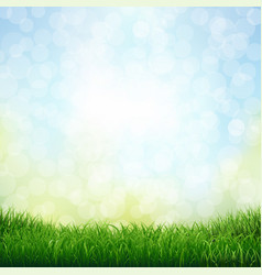 grass with bokeh vector image