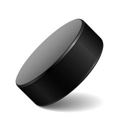Hockey puck vector image