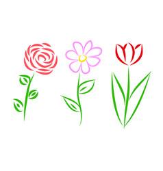 three flowers set vector image