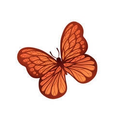 butterfly with wonderful ornament on wings flying vector image