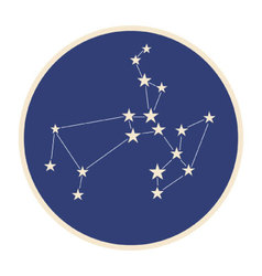 Constellation Sagittarius vector