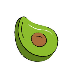 Delicious and healthy avocado fruit vector
