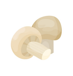 fresh mushroom champignon on a vector image