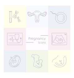 Medicine and pregnancy line icon vector