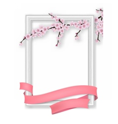 Photo frame blooming sakura branch pink ribbon vector