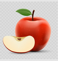 red ripe apple and slice isolated on a vector image