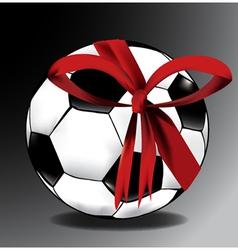 Sports ball gift vector image