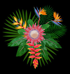 tropical bouquet composition with protea vector image