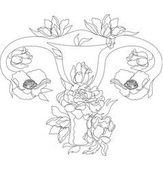 womens reproductive system with floral flowers vector image