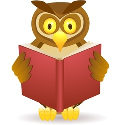 owl reading book vector image vector image