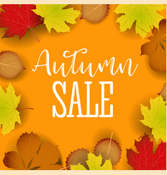 autumn calligraphy seasonal letteringweb banner vector image