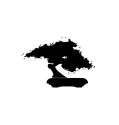 bonsai icon japanese bonsai tree silhouette logo vector image