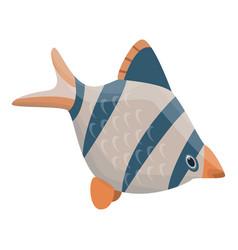 exotic fish icon isometric style vector image