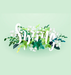 Floral spring design with white flowers green vector