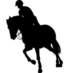 horse ridingequestrian sport silhouette vector image