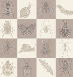 Insects squares on brown shades in a checkerboard vector image