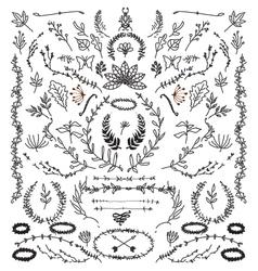 Hand Drawn Vintage design elements vector image vector image