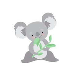 cute koala bear eating eucalyptus leaves funny vector image