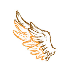 Feathers wing silhouette vector