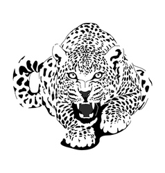 Leopard in black interpretation vector