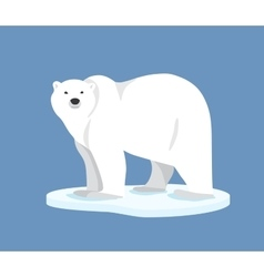 Polar bear standing on ice floe side view vector