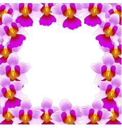vanda miss joaquim orchid border vector image