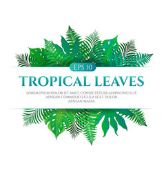 tropical leaves frame design with place for text vector image