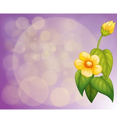 A gradient colored stationery with yellow flowers vector image vector image