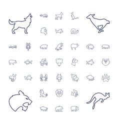 37 wildlife icons vector