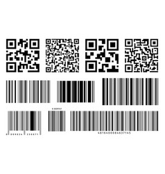 bar and qr codes labels set vector image