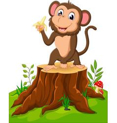 cartoon funny monkey holding banana on tree stump vector image