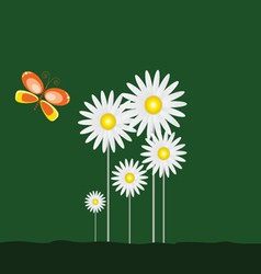 daisy and beauty butterfly with green background vector image