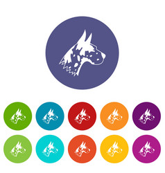 Great dane dog set icons vector