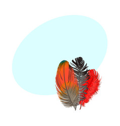 hand drawn bunch of three colorful tropical vector image