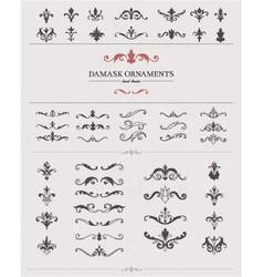 Hand Drawn Damask Elements vector image