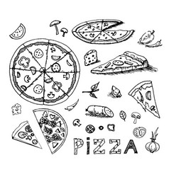 hand drawn sketch of pizza on vector image