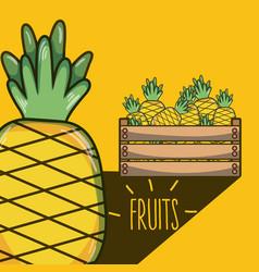 Pineapples inside wooden box vector