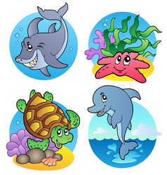 various sea animals and fishes vector image