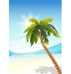Palm tree on beach White Sand beach vector image vector image