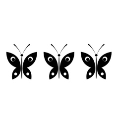 butterflies on a white background vector image