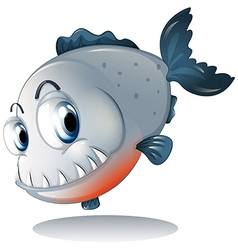 A big gray piranha vector
