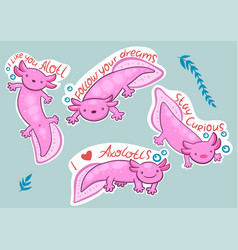 Axolotl stickers with inscriptions stay curious i vector