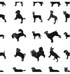 Dog pooch breed and other web icon in black vector